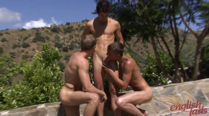 Three boys sucking cock