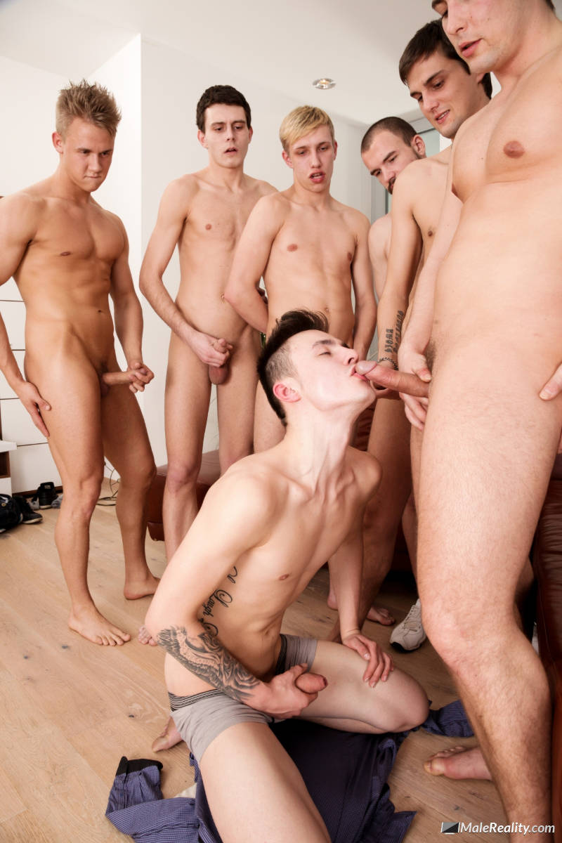 guys jerking off and sucking cock