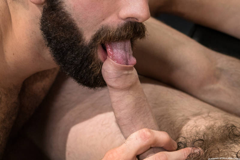 bearded man licking under the foreskin of his friend's uncut cock